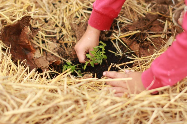 healthy kids can help plant a garden