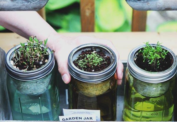 healthy kids start a garden