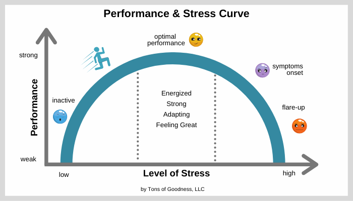 performance and stress curve associated with exercise and Hashimoto's thyroiditis