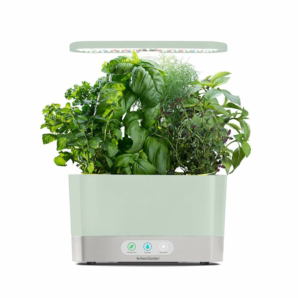 indoor garden for the gift guide