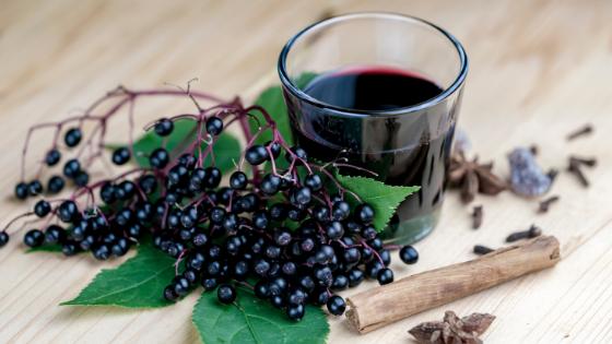 elderberries - a food that may boost immunity