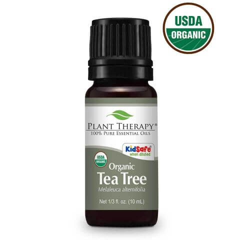 tea tree essential oil from plant therapy