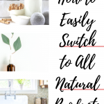 switch to all natural products pin