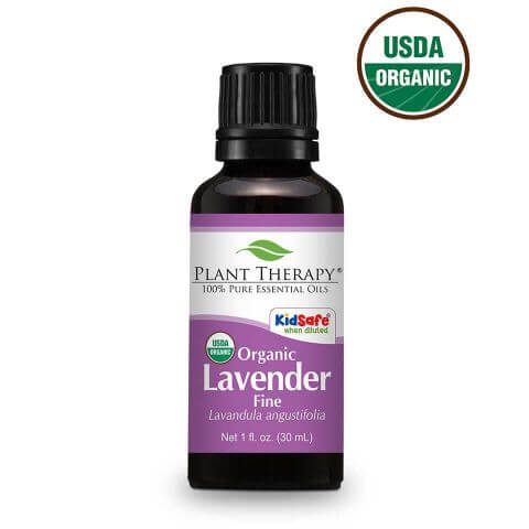 a bottle of plant therapy lavender essential oil