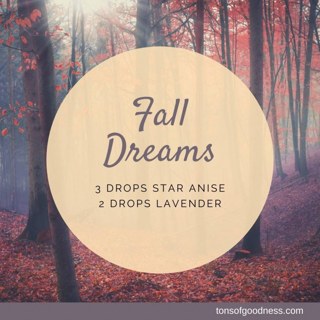 fall dreams essential oil blend with star anise and lavender