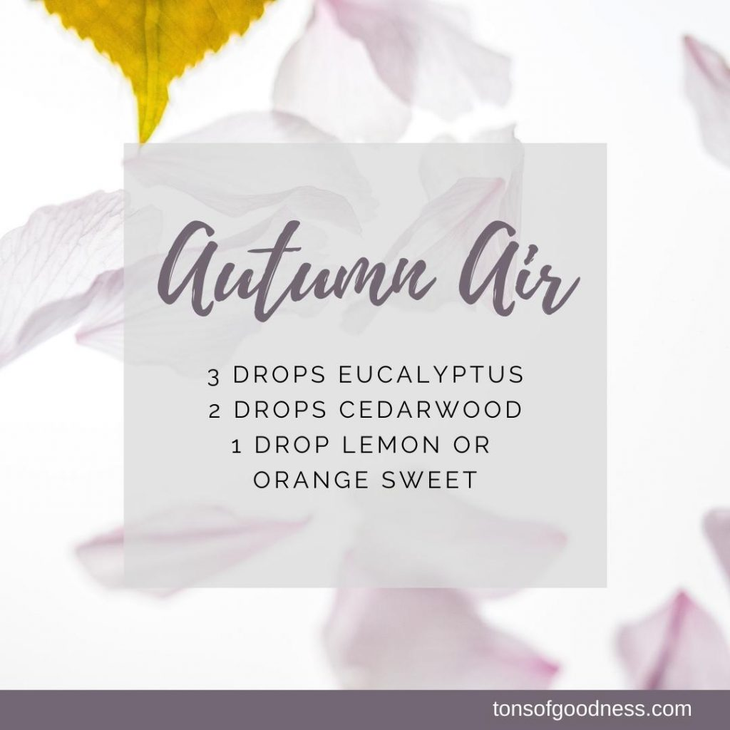 Autumn Air essential oil recipe with eucalyptus, cedarwood, and orange sweet